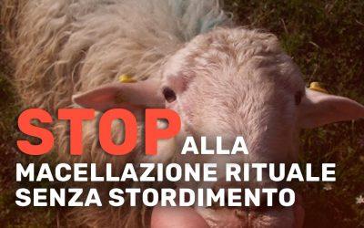 Stop alla macellazione rituale senza stordimento